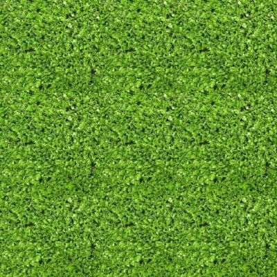 Césped artificial Basic para jardines exteriores